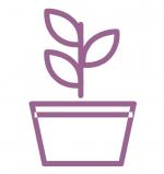 Environment-Icon3